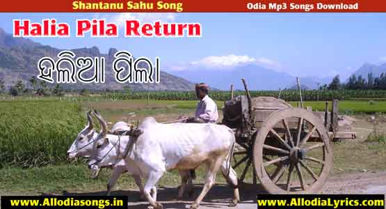 Halia Pila Return Sambalpuri New Song Shantanu Sahu